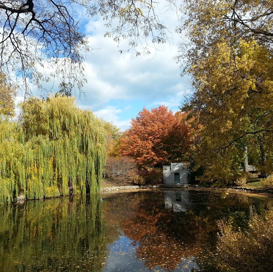 graceland cemetery lake