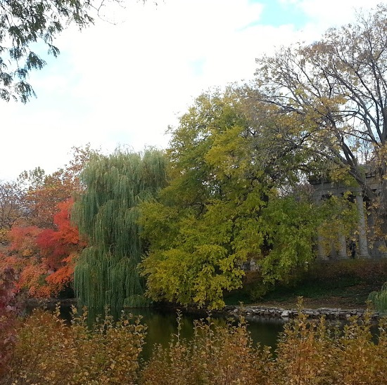 graceland cemetery lake chicago