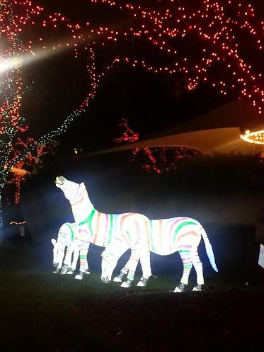 Zebra light sculptures