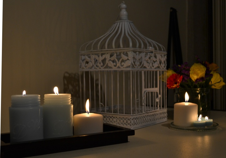 White birdcage and mason jar-shaped candles that smelled lovely, both from HomeGoods
