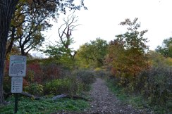 The Bird & Butterfly Sanctuary on Wooded island
