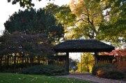 japanese gardens osaka jackson park wooded island
