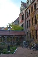 university of chicago fall colors