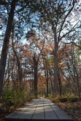Walking the trail near Pontiac Canyon