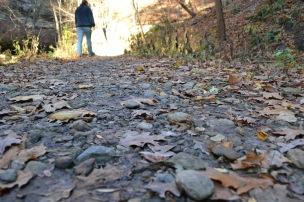 Walking through Tonty Canyon