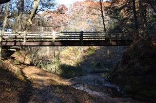 Bridge near Tonty Canyon