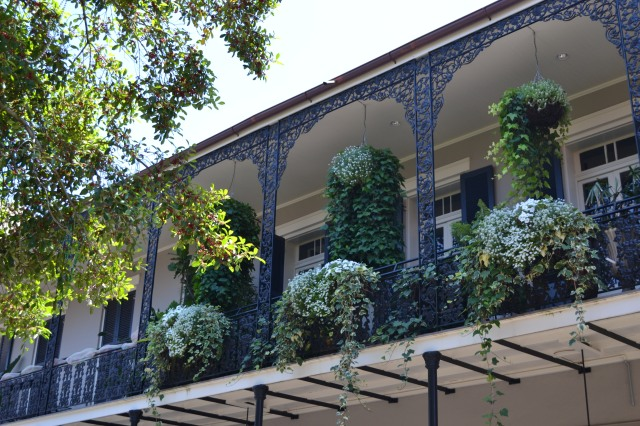 The flowers and greenery also spill over wrought iron fence balconies on every street.