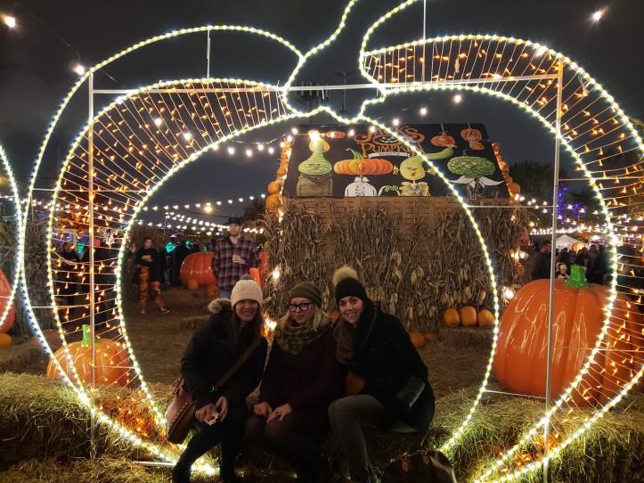 jacks pumpkin patch pop up chicago