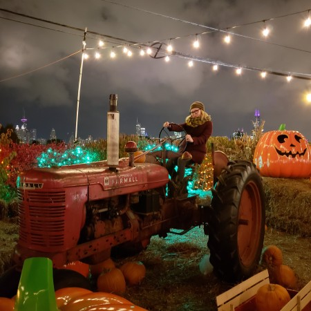 jacks pumpkin patch pop up chicago